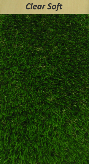 Clear View Grass